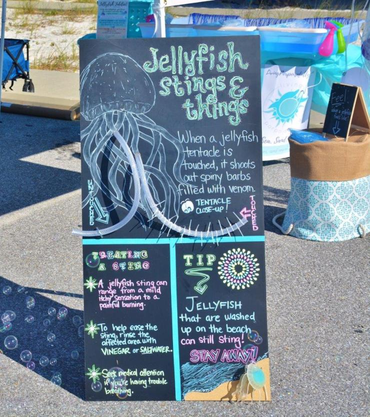 jellyfish stings and things board 2