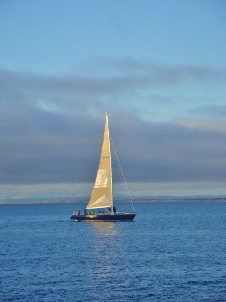 Coast Guard Pier - sailboat 2