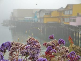 Fisherman's Wharf - foggy morning