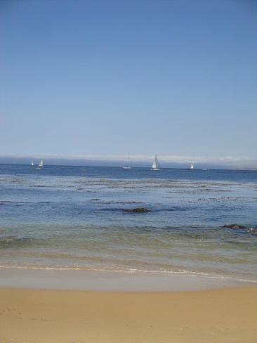 Monterey Bay California San Carlos Beach