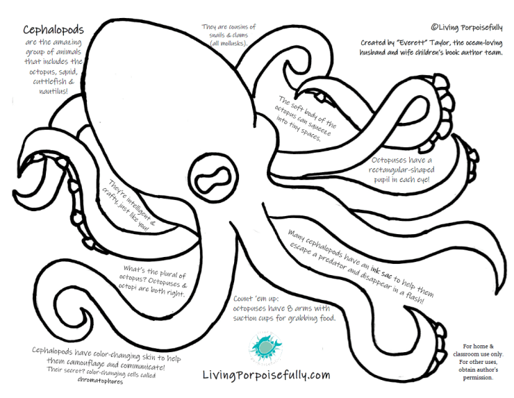 Octopus Stencil and Coloring Fact Page - Cephalopods - Living Porpoisefully
