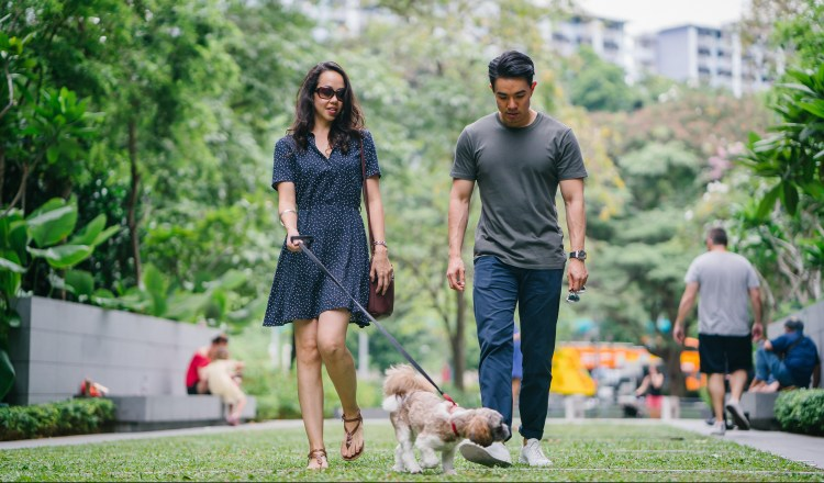 Exercise Hacks: How to be fitter without really trying.  Image of young couple walking their dog through a public park