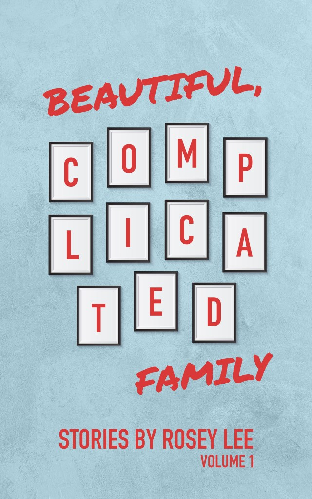 Beautiful Complicated Family Book Jacket Vol 1