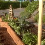 garden-62309-003