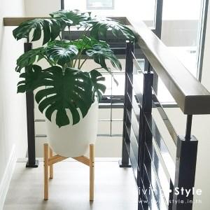 กระถาง มอนสเตอร่า ขาไม้ แต่งห้องนั่งเล่น %%sep%% Livingstyle ตกแต่งบ้าน แจกันดอกไม้ ดอกไม้ปลอม ต้นไม้ปลอม ดอกไม้ประดิษฐ์ ต้นไม้ประดิษฐ์ สวนแนวตั้ง