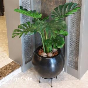 มอนสเตอร่า ต้นไม้ปลอม ใบมอน กระถางมอนสเตอร่า %%sep%% Livingstyle ตกแต่งบ้าน แจกันดอกไม้ ดอกไม้ประดิษฐ์ ต้นไม้ประดิษฐ์ สวนแนวตั้ง สวนหย่อม จัดสวน