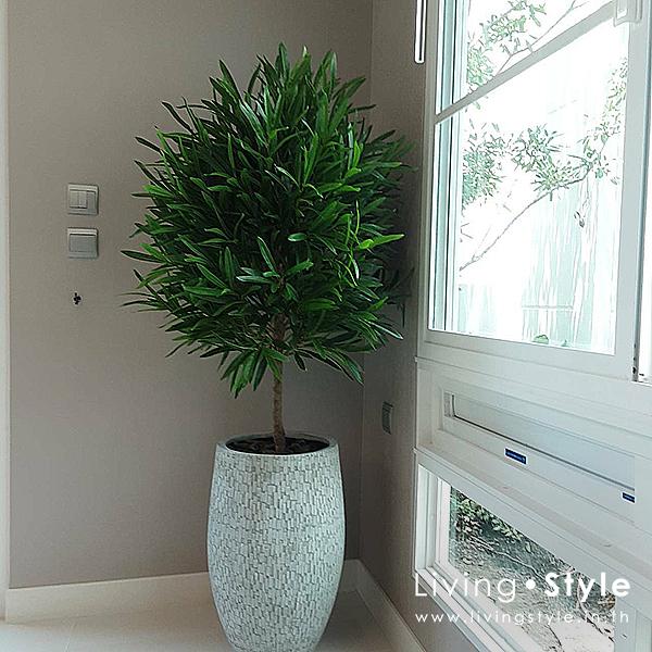 โอลีฟ ต้นมะกอก ใบมะกอก ต้นโอลีฟ ตกแต่งบ้าน Livingstyle ดอกไม้ปลอม ต้นไม้ปลอม ดอกไม้ประดิษฐ์ ต้นไม้ประดิษฐ์ ตกแต่งบ้าน สวนแนวตั้ง สวนหย่อม