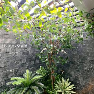 สวนหลังบ้าน 6 ตกแต่งบ้าน Livingstyle ดอกไม้ปลอม ต้นไม้ปลอม ดอกไม้ประดิษฐ์ ต้นไม้ประดิษฐ์ ตกแต่งบ้าน สวนแนวตั้ง สวนหย่อม