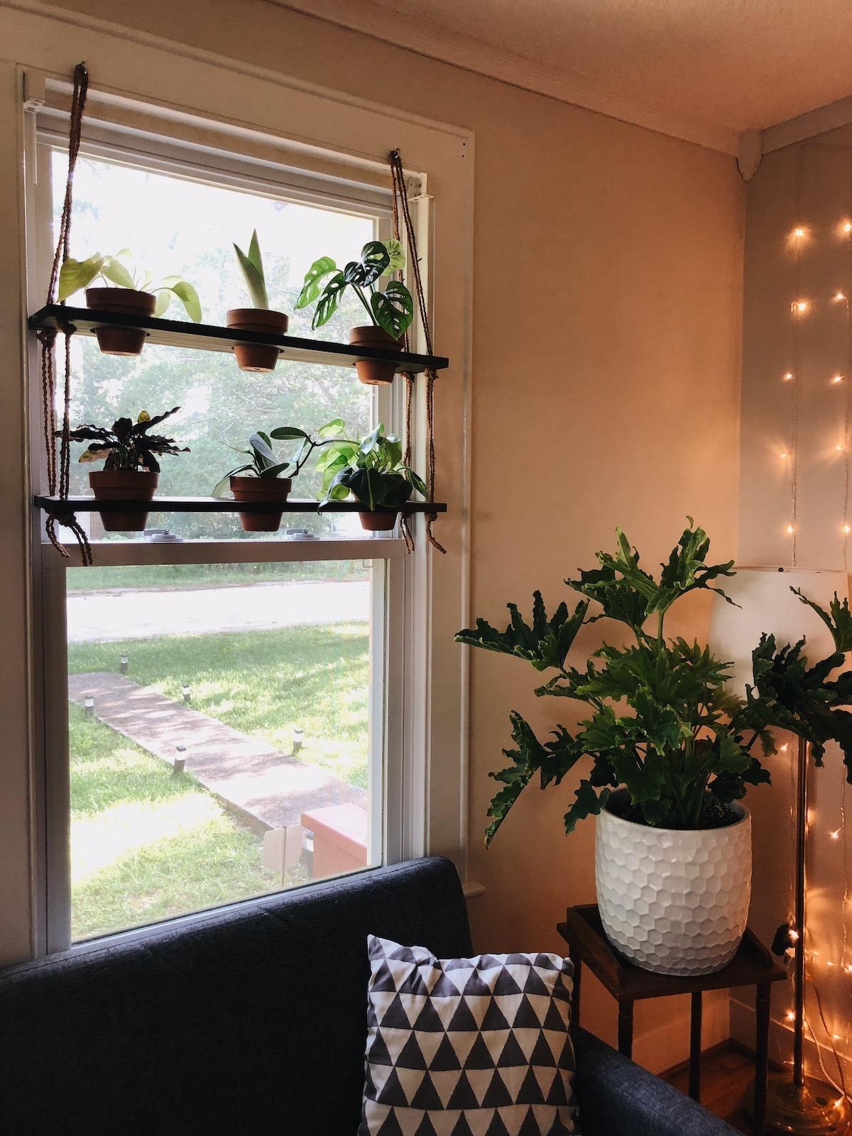 diy hanging plant shelf living the