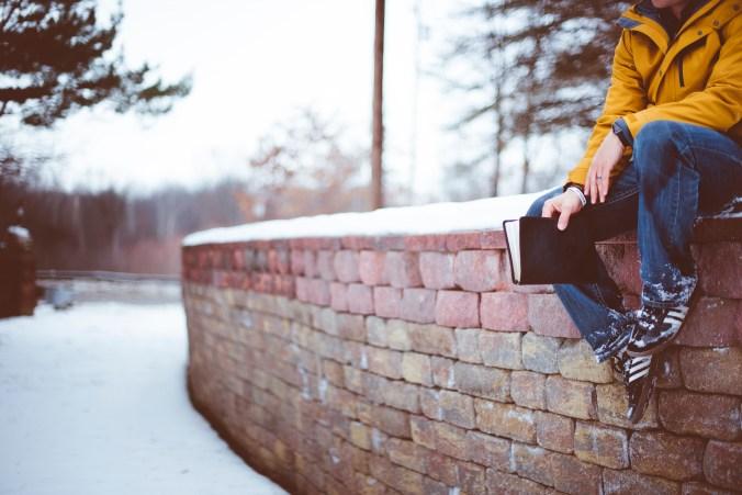 Sitting on a Snowy Rock Wall