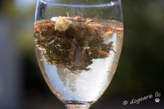 Put blooming flower tea into 7-Up for bubbles and it all collapsed.