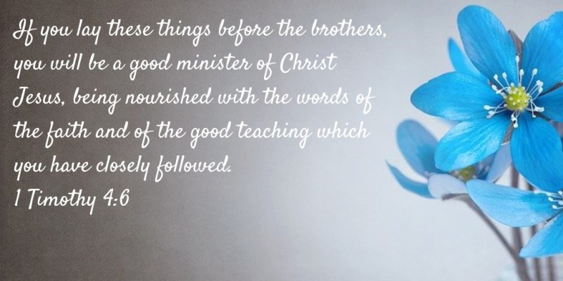 If you lay these things before the brothers, you will be a good minister of Christ Jesus, being nourished with the words of the faith and of the good teaching which you have closely followed. 1 Timothy 4:6