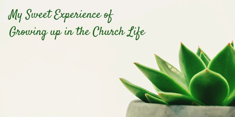 My Sweet Experience of Growing up in the Church Life