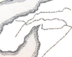 Upper Arrow Lake detail.