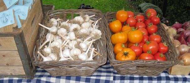 Garlic and tomatoes.