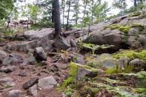 Granite Ridge Trail.