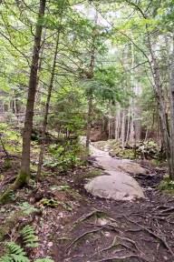 The Granite Ridge trail.
