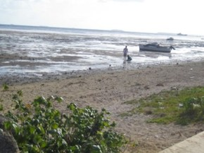 Beach near our house.