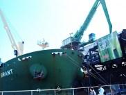 Freighter unloading raw sugar.