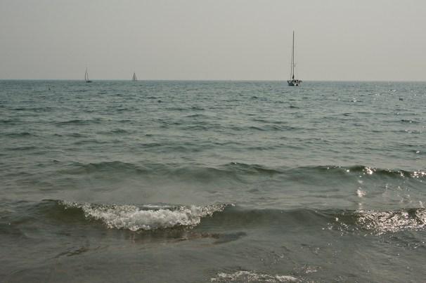 Saialboats at Ward's.