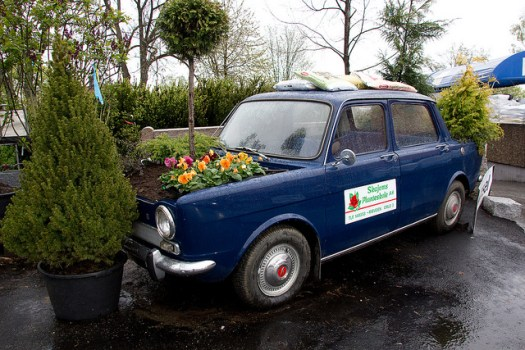 The flower bed car