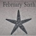 2月6日生まれの運勢と性格【星座/占星術とタロットで導く誕生日占い】
