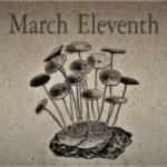 3月11日生まれの運勢と性格【星座/占星術とタロットで導く誕生日占い】