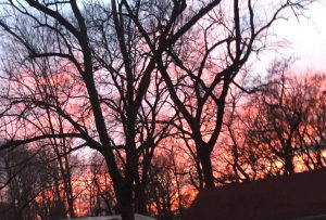 wINTER SUNSETS ARE SPECTACULAR
