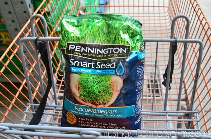 Pennington grass seed in cart