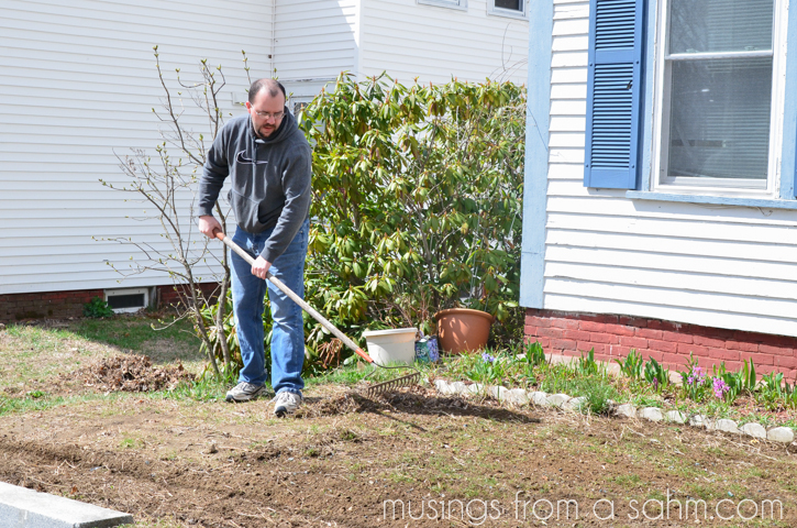 preparing lawn for seed
