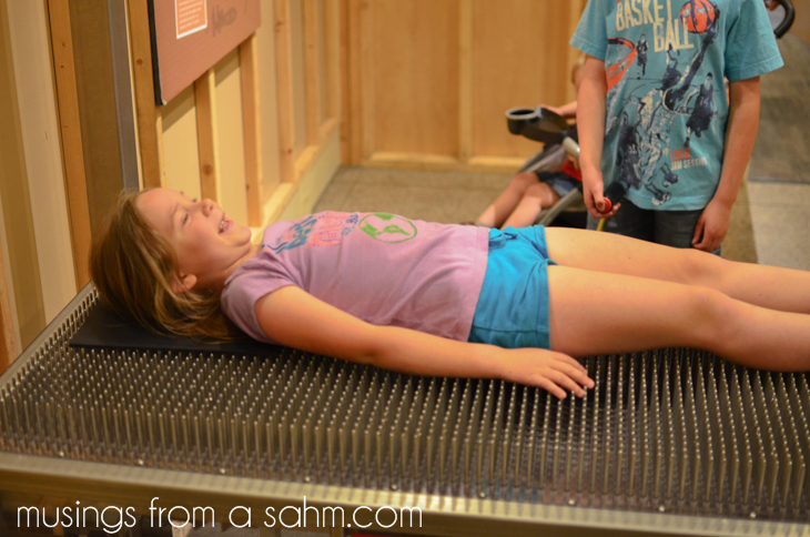 Museum of Science bed of nails