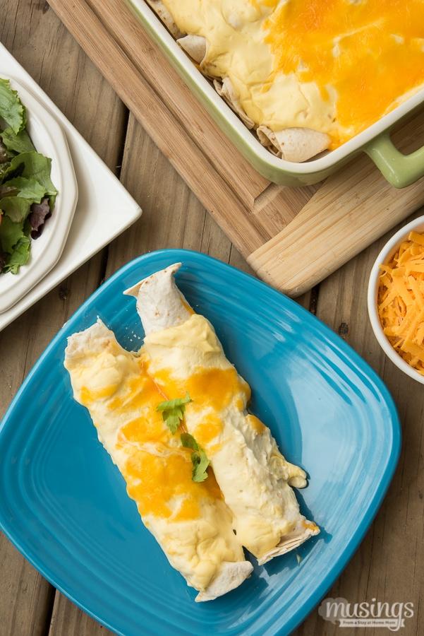 Creamy Chicken Enchiladas recipe