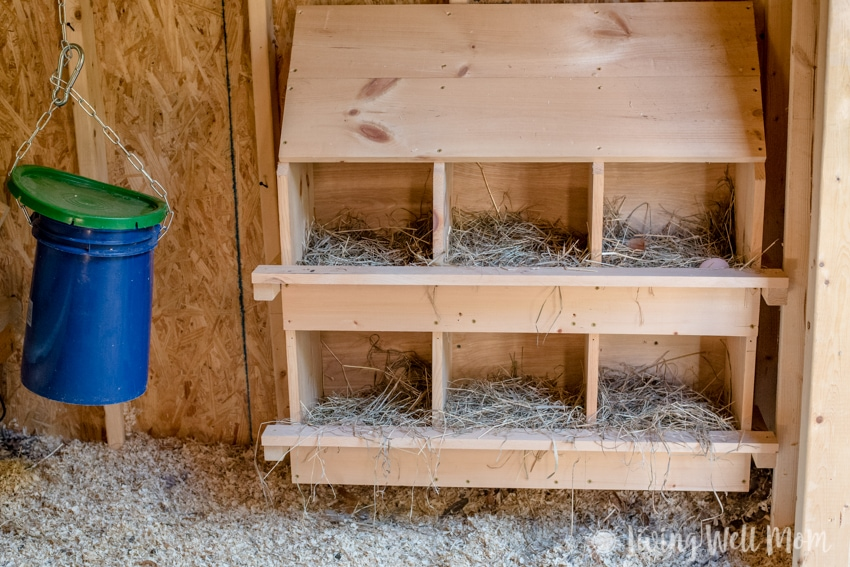 Homemade Wooden Nestboxes - Come tour our chicken coop. I'll show you around our homemade coop and share a few tricks we've learned about keeping backyard chickens.