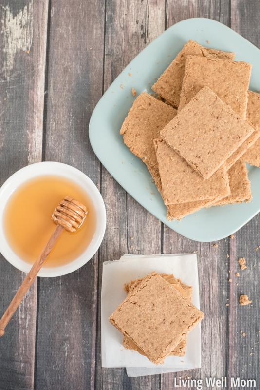 Tired of expensive, time-consuming gluten-free or Paleo bread? You'll love this super easy Graham Bread recipe - it's the easiest Paleo bread for kids you'll ever make and kids LOVE it!