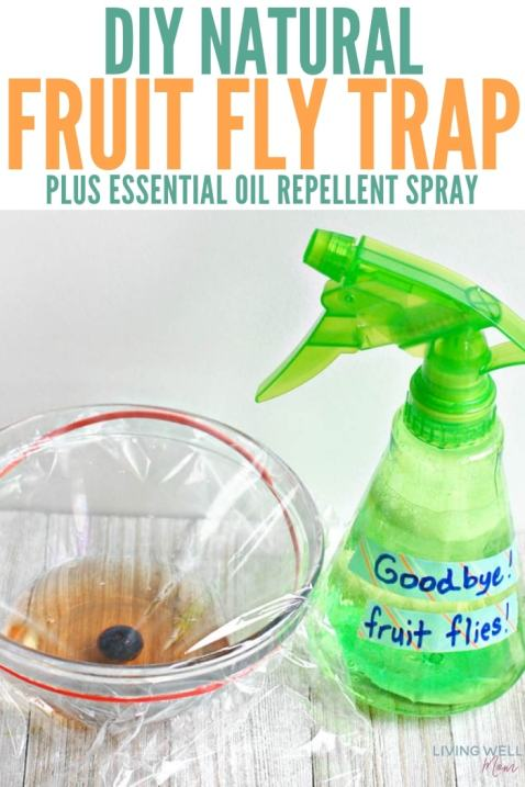 DIY Natural Fruit Fly Trap + Essential Oil Spray - Living