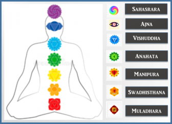The seven chakras in the human body