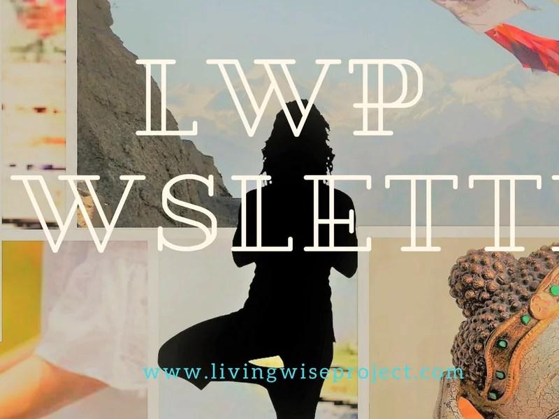 Enlighten Yourself | Newsletter No.14