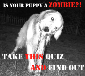 Beware of Zombies masquerading as Puppies!