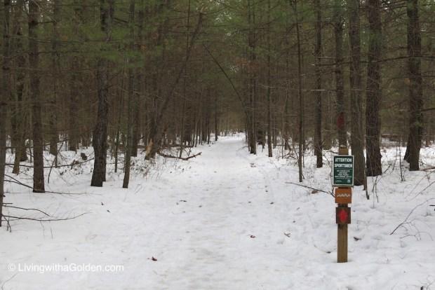 LWAG Alewive Woods Preserve Kennebunk Maine