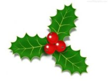 christmas-holly-berries