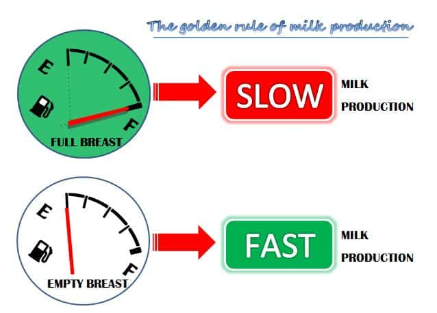 golden-rule-milk-production
