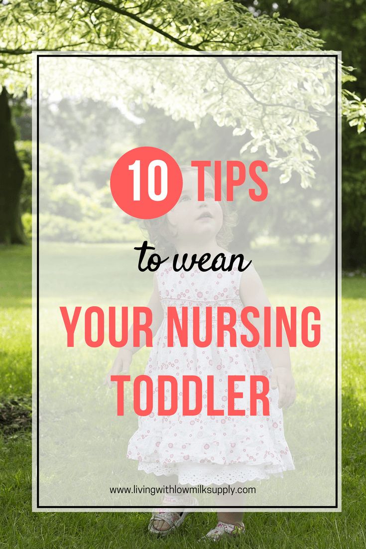 Do you have a nursing toddler who refuses to wean from breastfeeding? Learn 10+ tips to wean a booby-obsessed toddler in this article. Click through to read the weaning tips or pin for later