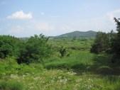 Upo Wetlands (14)