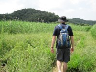 Upo Wetlands (6)