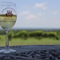 Time to Wine: Raffaldini Vineyards