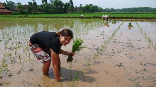 Kalianyar, Indonesia