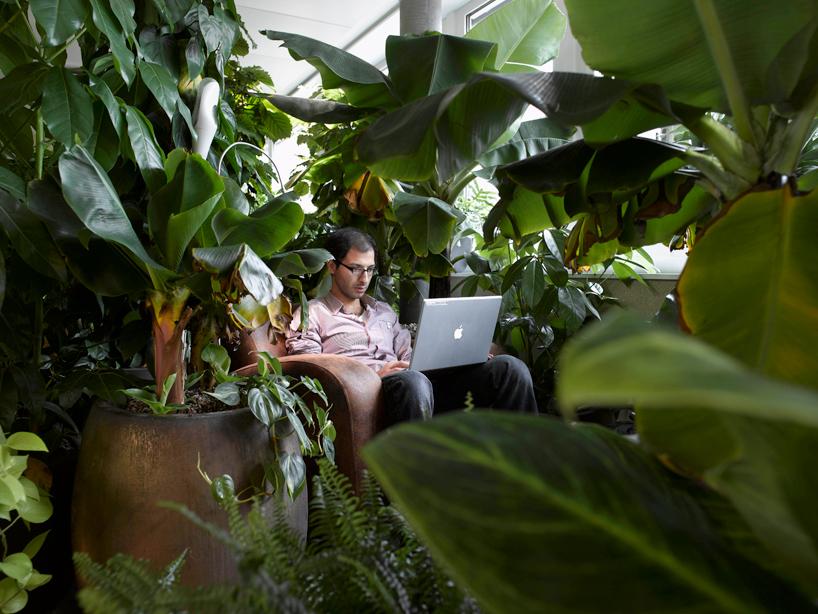 camenzind-evolution-design-google-offices-designboom-02