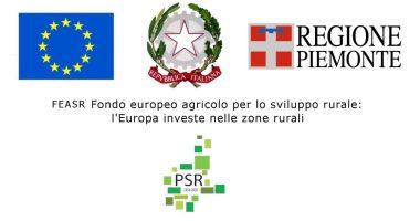 banner_web_PSR20142020
