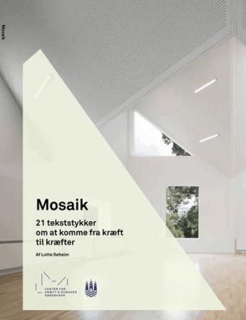 Mosaik - 21 tekststykker om at komme fra kræft til kræfter