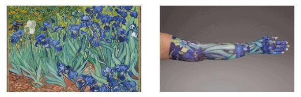 Irises af Van Gogh er et af flere kunst og kompressionsærmer